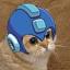 Mega Meow