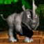 Ramby the Rhinoceros