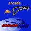 Surfers Paradise Race Rookie