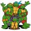 So Many Turtles!!