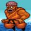 World Champion Fighter